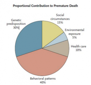 Contributors to premature death