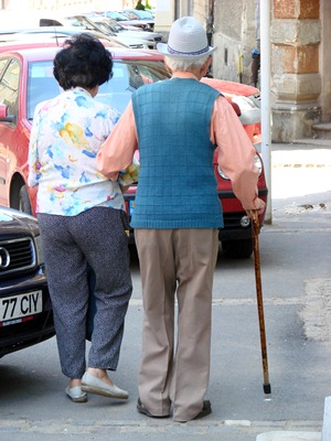 The Groningen Meander Walking Test: A Dynamic Walking Test for Older Adults With Dementia.
