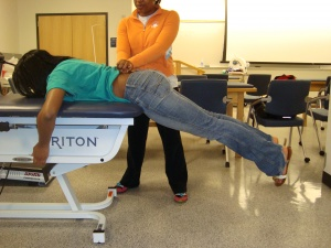 A literature review of clinical tests for lumbar instability in low back pain
