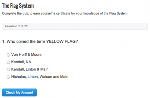 The Flag System Quiz
