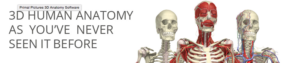 Interactive functional anatomy software from Primal Pictures