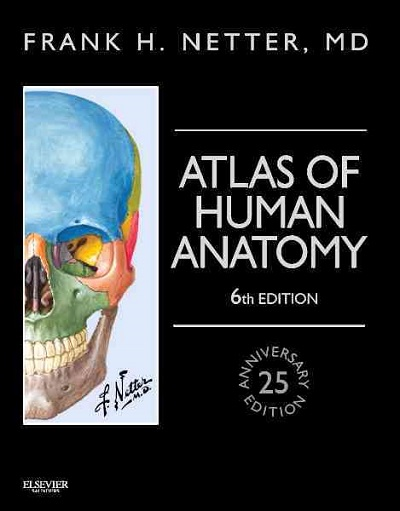 Netter's Atlas of Human Anatomy (6th Ed.)