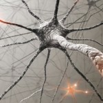 neurological rehabilitation for physiotherapy and physical therapy