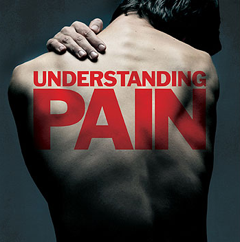 understanding pain course for physiotherapy and physical therapy