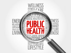 Systems thinking in public health: a bibliographic contribution to a meta-narrative review.