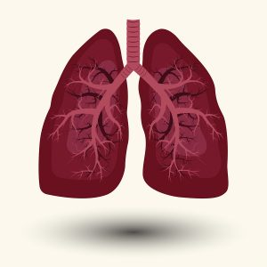 Effects of pulmonary rehabilitation in lung transplant candidates: a systematic review.