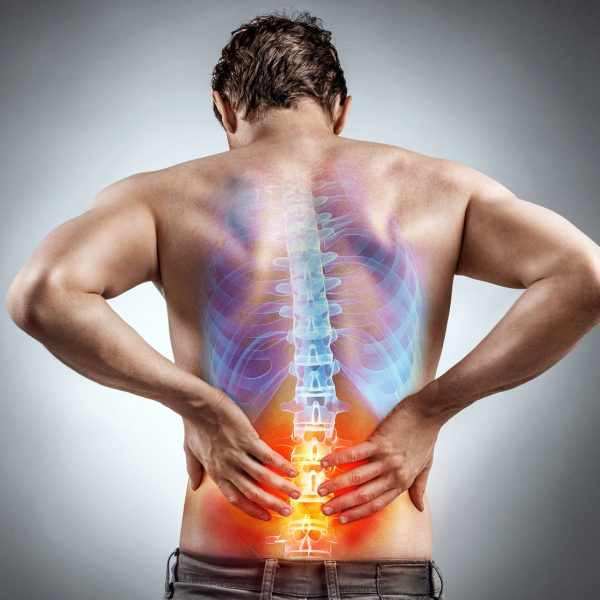low back pain physiotherapy guidelines